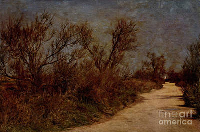 Painterly Photograph - Carmargue ,france. The Path. by Robert Brown
