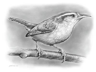 Wren Drawing - Carolina Wren by Greg Joens