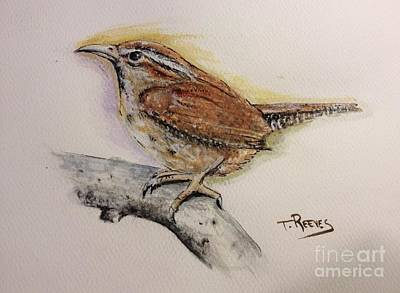 Wren Painting - Carolina Wren by Ted Reeves