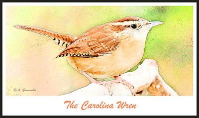 Carolina Wren Digital Art - Carolina Wren, Winter Wren by A Gurmankin