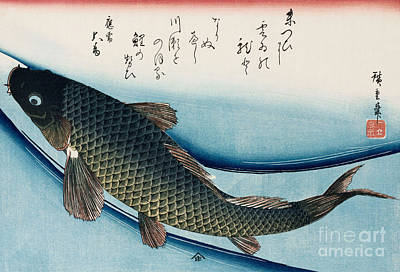 Koi Drawing - Carp by Hiroshige