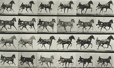 Eadwerd Photograph - Carriage Driving by Eadweard Muybridge