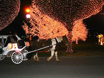 Christmas Photograph - Carriage Ride At Night by Anne Cameron Cutri