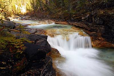 Cascade On Beauty Creek Print by Larry Ricker
