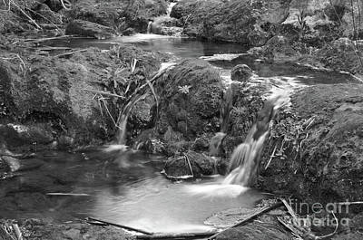 Creek Photograph - Cascades In A Peaceful Creek Scenery by Angelo DeVal