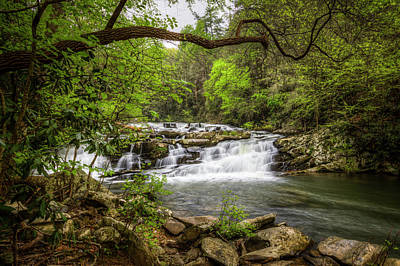 Cascading In The Forest Print by Debra and Dave Vanderlaan