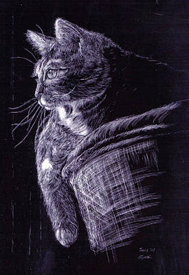 Scratchboard Painting - Cat At The Window by Roger Parnow