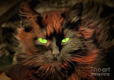 Cat Beelzebub Original by Sergey Lukashin