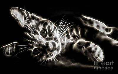 Cat Collection Print by Marvin Blaine