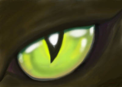 Eyes Painting - Cat Eye by Kevin Middleton