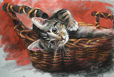 Cat In The Basket Print by Ylli Haruni