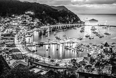 Santa Catalina Island Photograph - Catalina Island Avalon Bay Black And White Picture by Paul Velgos