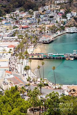 Santa Catalina Island Photograph - Catalina Island Avalon Waterfront Aerial Photo by Paul Velgos