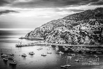 Santa Catalina Island Photograph - Catalina Island Black And White Photo by Paul Velgos
