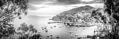 Santa Catalina Island Photograph - Catalina Island Panoramic Black And White Photo by Paul Velgos