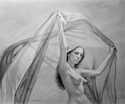 Drawing - Catching Wind In Shades Of Gray by AD Cook