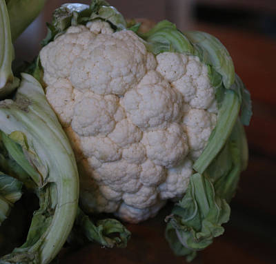 Cauliflower Painting - Cauliflower by Imagery-at- Work