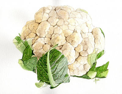 Cauliflower Painting - Cauliflower by Swati Singh