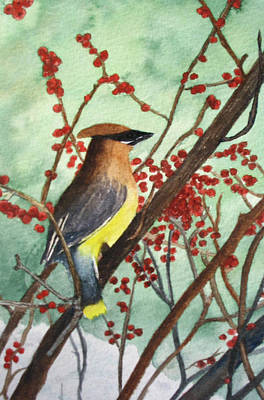 Cedar Wax Wing Print by Sharon Farber
