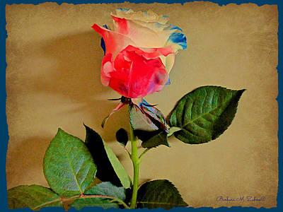 Celebration Rose Print by Barbara Zahno