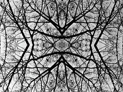 Web Of Life Photograph - Centering Solitude by Debra MacNealy