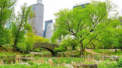 Photograph - Central Park Ny  by Traci Law