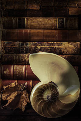 Chambered Nautilus Shell  With Old Books Print by Garry Gay