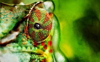 Digital Art - Chameleon ....  by Jacqueline Schreiber