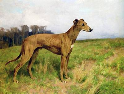 Dee Painting - Champion Greyhound Dee Flint by Wardle
