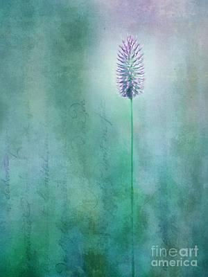 Vertical Format Photograph - Chandelle by Priska Wettstein