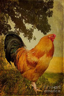 Rooster Digital Art - Chanticleer by Lois Bryan