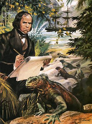 Reptiles Drawing - Charles Darwin On The Galapagos Islands by Andrew Howat