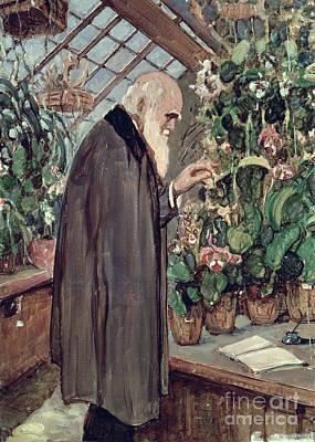 Collier Painting - Charles Robert Darwin by John Collier