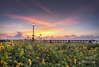 Charleston Waterfront Park Sunrise Original by Dustin K Ryan