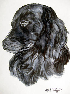 Boykin Spaniel Painting - Charlie by Lil Taylor