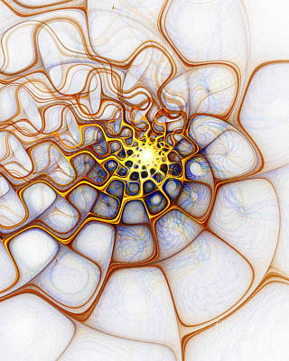Apophysis Digital Art - Charlotte's Web by Amanda Moore