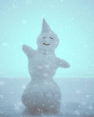 Lake Photograph - Cheerful Snowman by Ari Salmela