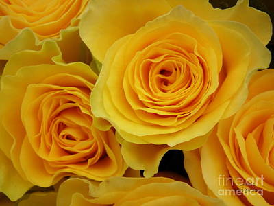 Cheerful Yellow Roses Print by Lainie Wrightson