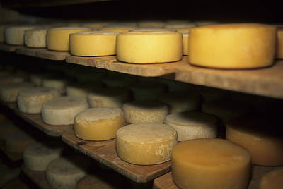 Cheese Ripens On Shelves In A Cave Print by Taylor S. Kennedy