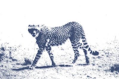 Africa Photograph - Cheetah 2 by Joe Hamilton