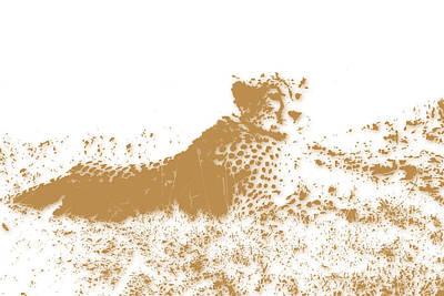 Cheetahs Photograph - Cheetah 4 by Joe Hamilton