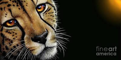 Cheetah Original by Jurek Zamoyski