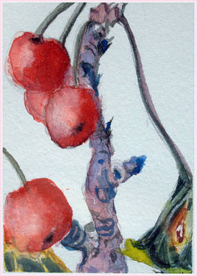 Cherry Trees Drawing - Cherry Branch by Mindy Newman