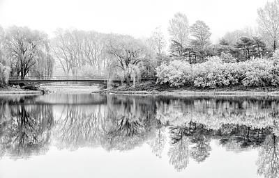 Chicago Botanic Garden In Black And White Print by Julie Palencia