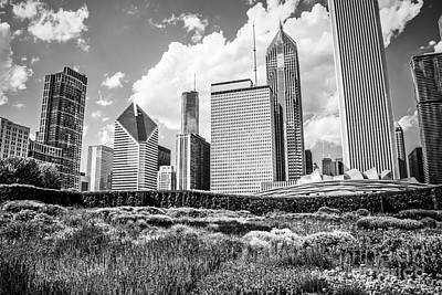 Stone Buildings Photograph - Chicago Skyline At Lurie Garden Black And White Photo by Paul Velgos
