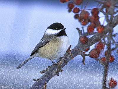 Chickadee Mixed Media - Chickadee With Craquelure by Deborah Benoit