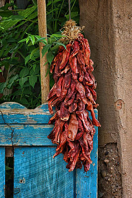 Outdoor Still Life Photograph - Chile Ristra And Old Gate by Nikolyn McDonald