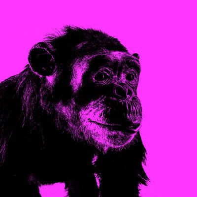 Abstract Digital Art - Chimp No 16 by Claire Doherty