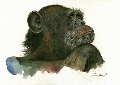 Chimpanzee Painting - Chimp Portrait by Juan Bosco