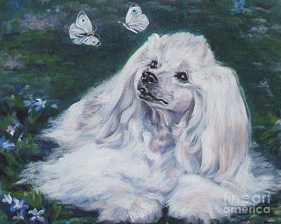 Chinese Crested Powderpuff With Butterflies Print by Lee Ann Shepard
